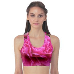 Paeonia Eleanor Sports Bra