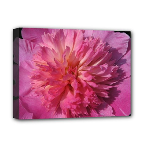 PAEONIA CORAL Deluxe Canvas 16  x 12