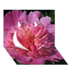 PAEONIA CORAL Heart 3D Greeting Card (7x5)