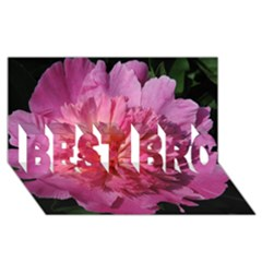 PAEONIA CORAL BEST BRO 3D Greeting Card (8x4)