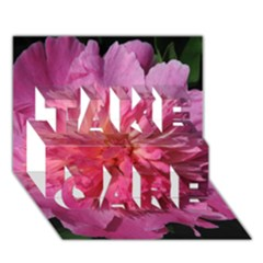 PAEONIA CORAL TAKE CARE 3D Greeting Card (7x5)