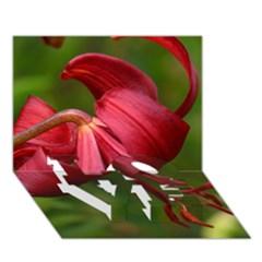LILIUM RED VELVET LOVE Bottom 3D Greeting Card (7x5)