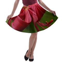 LILIUM RED VELVET A-line Skater Skirt