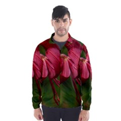 LILIUM RED VELVET Wind Breaker (Men)