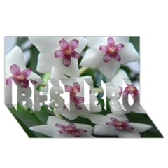 HOYABELLA BEST BRO 3D Greeting Card (8x4)