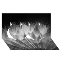DANDELION Twin Hearts 3D Greeting Card (8x4)