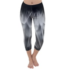 Dandelion Capri Winter Leggings