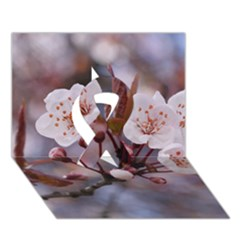 CHERRY BLOSSOMS Ribbon 3D Greeting Card (7x5)