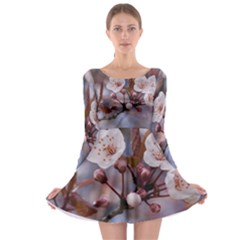 Cherry Blossoms Long Sleeve Skater Dress