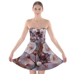 Cherry Blossoms Strapless Bra Top Dress