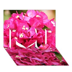 BOUGAINVILLEA I Love You 3D Greeting Card (7x5)