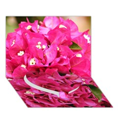 Bougainvillea Heart Bottom 3d Greeting Card (7x5)