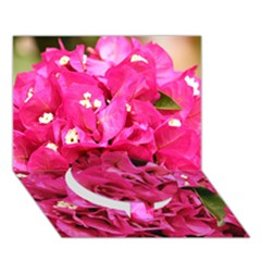 BOUGAINVILLEA Circle Bottom 3D Greeting Card (7x5)