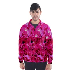 Bougainvillea Wind Breaker (men)