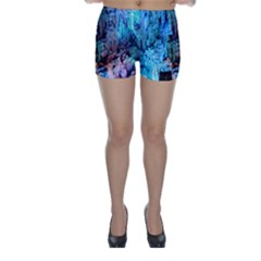 Reed Flute Caves 3 Skinny Shorts
