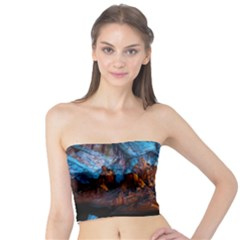 Reed Flute Caves 1 Women s Tube Tops