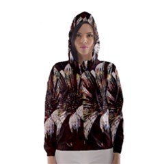 Art Studio 6216c Hooded Wind Breaker (Women)