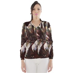 Art Studio 6216c Wind Breaker (Women)