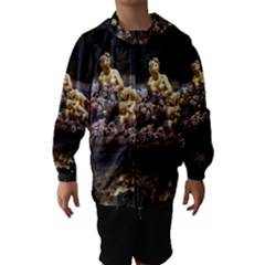 Palace Of Versailles 3 Hooded Wind Breaker (kids)