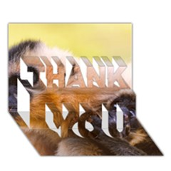 Two Monkeys Thank You 3d Greeting Card (7x5)