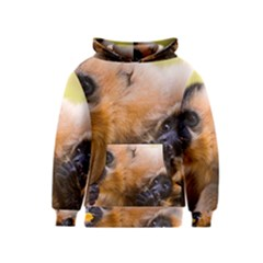 Two Monkeys Kid s Pullover Hoodies