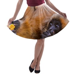 TWO MONKEYS A-line Skater Skirt