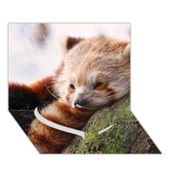 Red Panda Heart Bottom 3d Greeting Card (7x5)