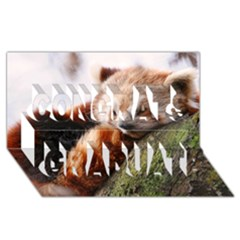 Red Panda Congrats Graduate 3d Greeting Card (8x4)