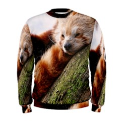 Red Panda Men s Sweatshirts