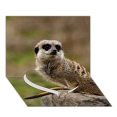 Meerkat Heart Bottom 3d Greeting Card (7x5)