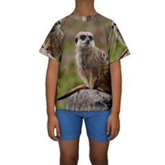 MEERKAT Kid s Short Sleeve Swimwear