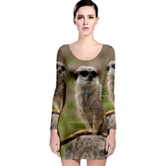 Meerkat Long Sleeve Bodycon Dresses