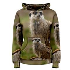 Meerkat Women s Pullover Hoodies