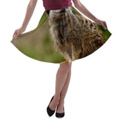MEERKAT A-line Skater Skirt