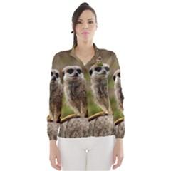Meerkat Wind Breaker (women)