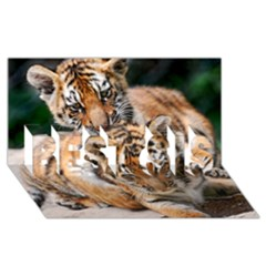 Baby Tigers Best Sis 3d Greeting Card (8x4)