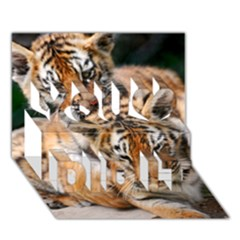 Baby Tigers You Did It 3d Greeting Card (7x5)