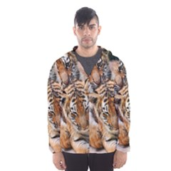 BABY TIGERS Hooded Wind Breaker (Men)