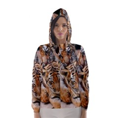 Baby Tigers Hooded Wind Breaker (women)
