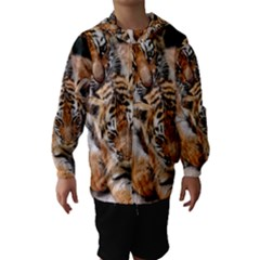 BABY TIGERS Hooded Wind Breaker (Kids)