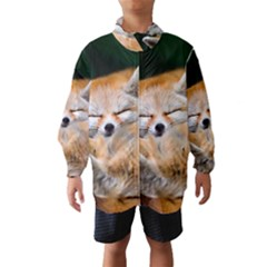 Baby Fox Sleeping Wind Breaker (kids)
