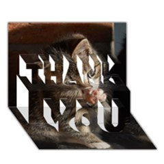 Talk To The Paw Thank You 3d Greeting Card (7x5)