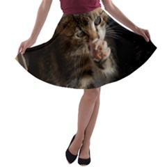 TALK TO THE PAW A-line Skater Skirt