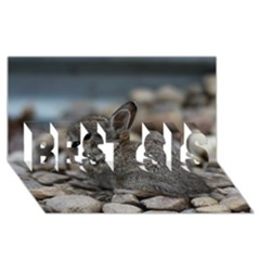 Small Baby Bunny Best Sis 3d Greeting Card (8x4)