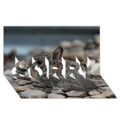 Small Baby Bunny Sorry 3d Greeting Card (8x4)