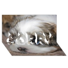 Sad Puppy Sorry 3d Greeting Card (8x4)