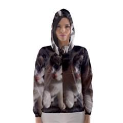 Questioning Kitty Hooded Wind Breaker (women)