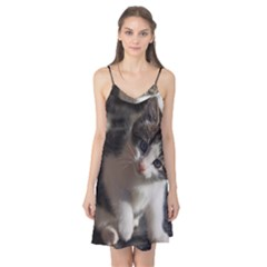 Questioning Kitty Camis Nightgown