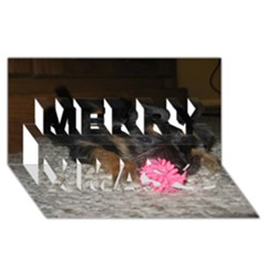 Puppy With A Chew Toy Merry Xmas 3d Greeting Card (8x4)