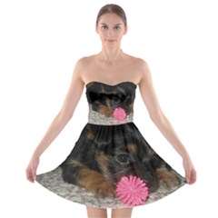 Puppy With A Chew Toy Strapless Bra Top Dress
